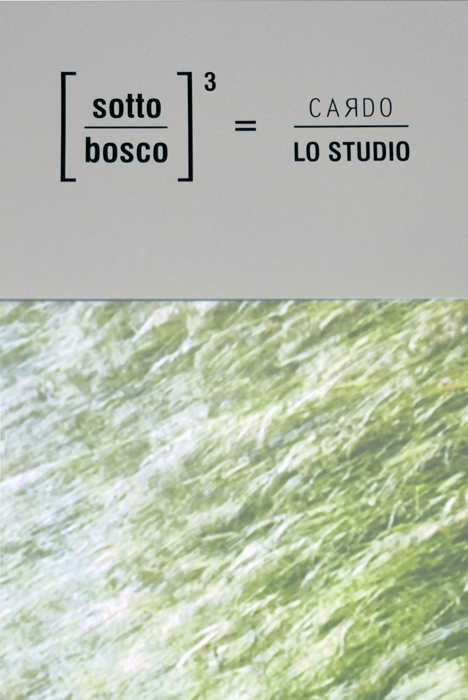 01 Sotto Bosco Lo Studio design/Cardo Hortus 2017